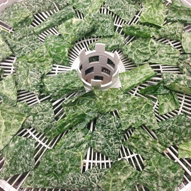 kale chips 2